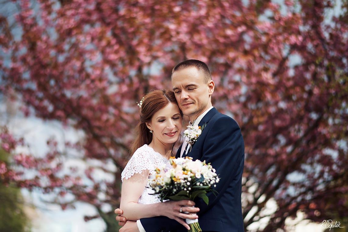 svatební fotografie novomanželů s rozkvetlou třešní