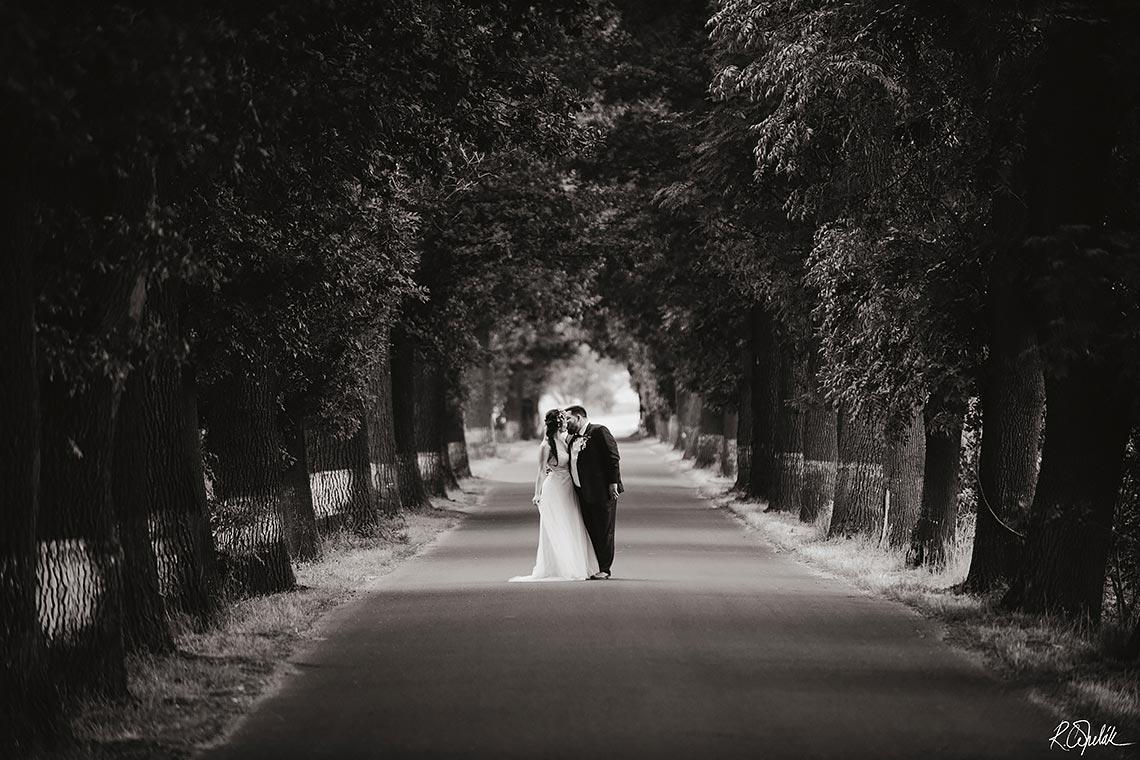 černobílá svatební fotografie v přírodě s álejí